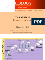 4th Meeting- Hominids and Human Evolution