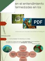 Avances en el entendimiento de Las enfermedades en los corales