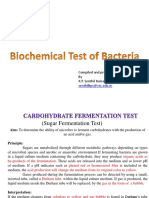 Biochemical Test of Bacteria