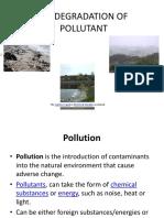 Biodegradation of Pollutant
