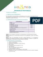 INMUNOELECTROFORESIS.pdf