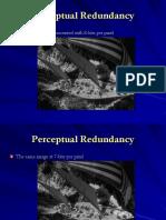 Watermarking.pdf