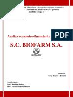 Analiza_economico-financiara_a_companiei.pdf