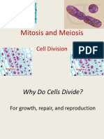 06 Cell Reproduction