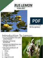 Presentation on lemon