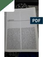 PDF - VERBETE LABIRINTO.pdf