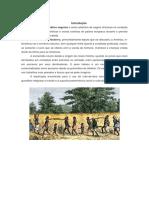Escravatura Em África