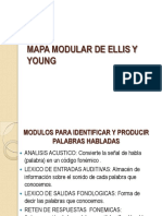 Mapa Modular de Ellis y Young Explicaion