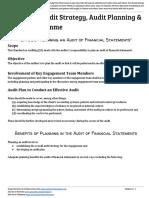01 C2 Audit Strategy, Audit Planning
