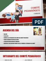 proyecto trimestral area pedagogica 2019