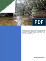 ENVICCOL-PUT-Modelo teórico y conceptual de impactos.pdf