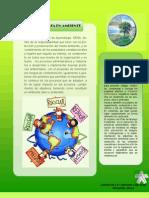 folleto pgirs[1]