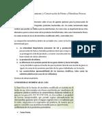 Técnicas de Almacenamiento y Conservación de Frutas y Hortalizas Frescas.docx