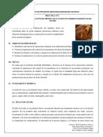 PRACTICA 3.1 Proceso de Elaboración de Dulce de Leche