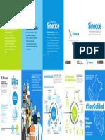 Sineace-folleto.pdf