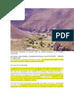 LEIDO - Arqueología ambiental.docx