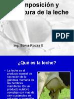 Composicion y Estructura de la leche.pdf