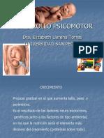 DESARROLLO PSICOMOTOR 2012