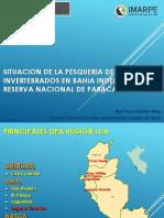 SITUACION DE LA PESQUERIA DE INVERTEBRADOS RNP2017.pptx