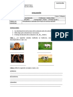 P. diagnostico 5º basico.docx