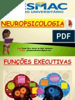 NEUROPSICOLOGIA-FUNÇÕES EXECUTIVAS atualizado201702completo1.pdf