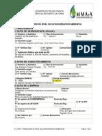 1.2. Formulario Categorizacion Puente Castilla Huma