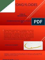 ESTRONGYLOIDES2.pptx