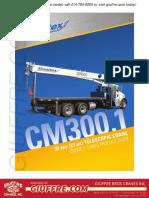 Manitex-30100C-loadchart.pdf