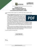 Resumen Ejecutivo Proc. Cobija (1)