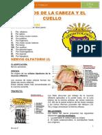 davidayalaaquiceneuro-111113121542-phpapp01.pdf