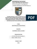 Informe Especial Sector Público.docx