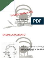 7 enmascaramiento 2017.pdf