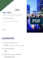 20181219_dmse_sanahuja_1 (1).pdf