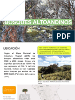 BOSQUES ALTOANDINOS.pdf