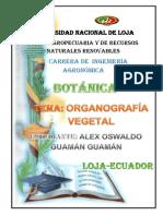 BOTANICA-Alex-Guaman.pdf
