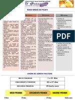 MANUAL POLLO AGOSTO 2016.pdf