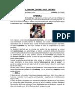 EPIDEMIA, ENDEMIA Y BROTE EPIDEMICO.docx