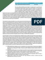 ENSAYO OPTATIVA COMPARACION SISTEMAS GESTION.docx