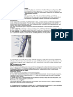 El procedimiento de la flebotomía.docx