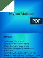 Lesson_9._Phylum_Mollusca[1].pdf