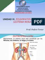 Unidad Vi. Fisiopatologia Del Sistema Renal