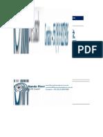 Teste Perfil Comportamental e Preferencia Cerebral Em Excel Nandaricci