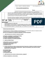 EV DIAGNOSTICA SEGUNDO COCLO 2019.docx