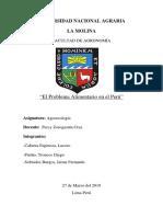 EL PROBLEMA ALIMENTARIO EN EL PERU - Monografía.docx