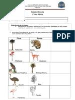 flora y fauna chilena viernes 12 de abril.docx