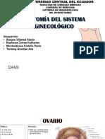 Grupo 1- Anatomía de Sistema Ginecológico