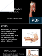 ARTICULACION DE CODO.pptx