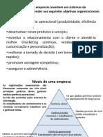 Tipos de SI empresariais.pdf