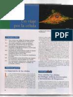 S04_S08_Lectura Célula.pdf