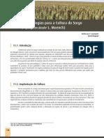 newarchive-169.pdf